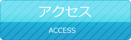 access-button